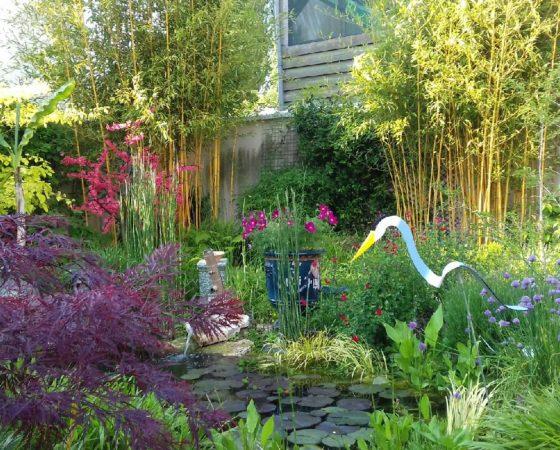 Préparation du jardin en vue du printemps
